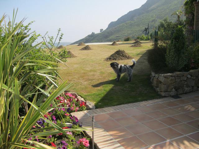 Empresa de mantenimiento de jardines en marbella greenthia - Mantenimiento de jardines ...