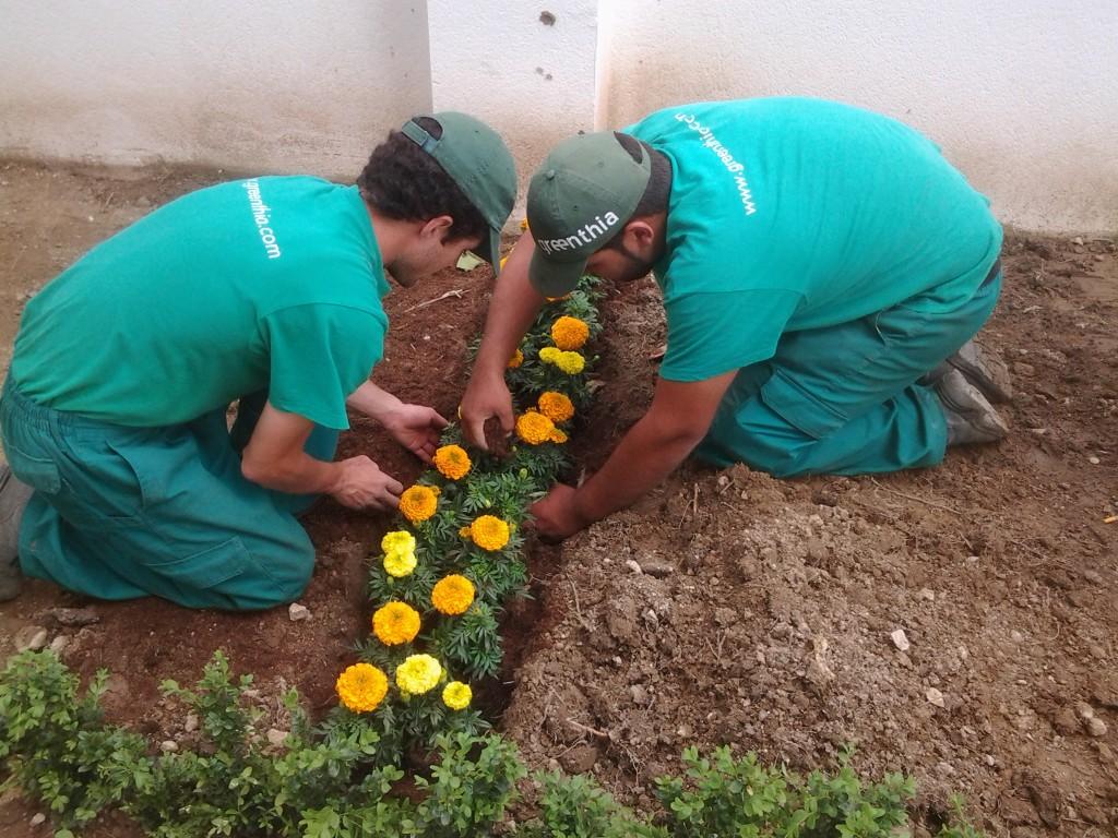 jardineria marbella