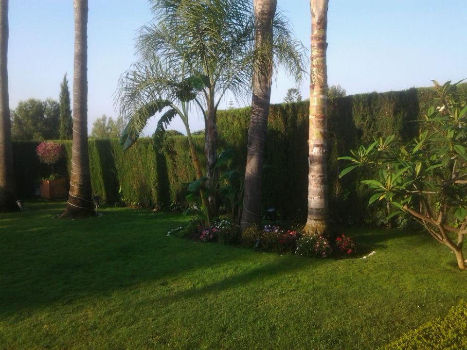 Mantenimiento de jardines greenthia for Mantenimiento de jardines