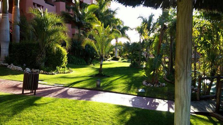 mantenimiento de jardines jardineria malaga