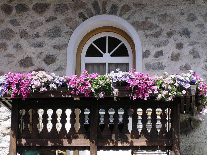 8 Flores Perfectas Para Balcones - Fotos-de-balcones-con-flores