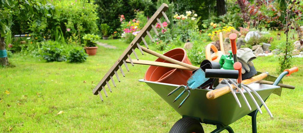 servicios de jardinería profesionales