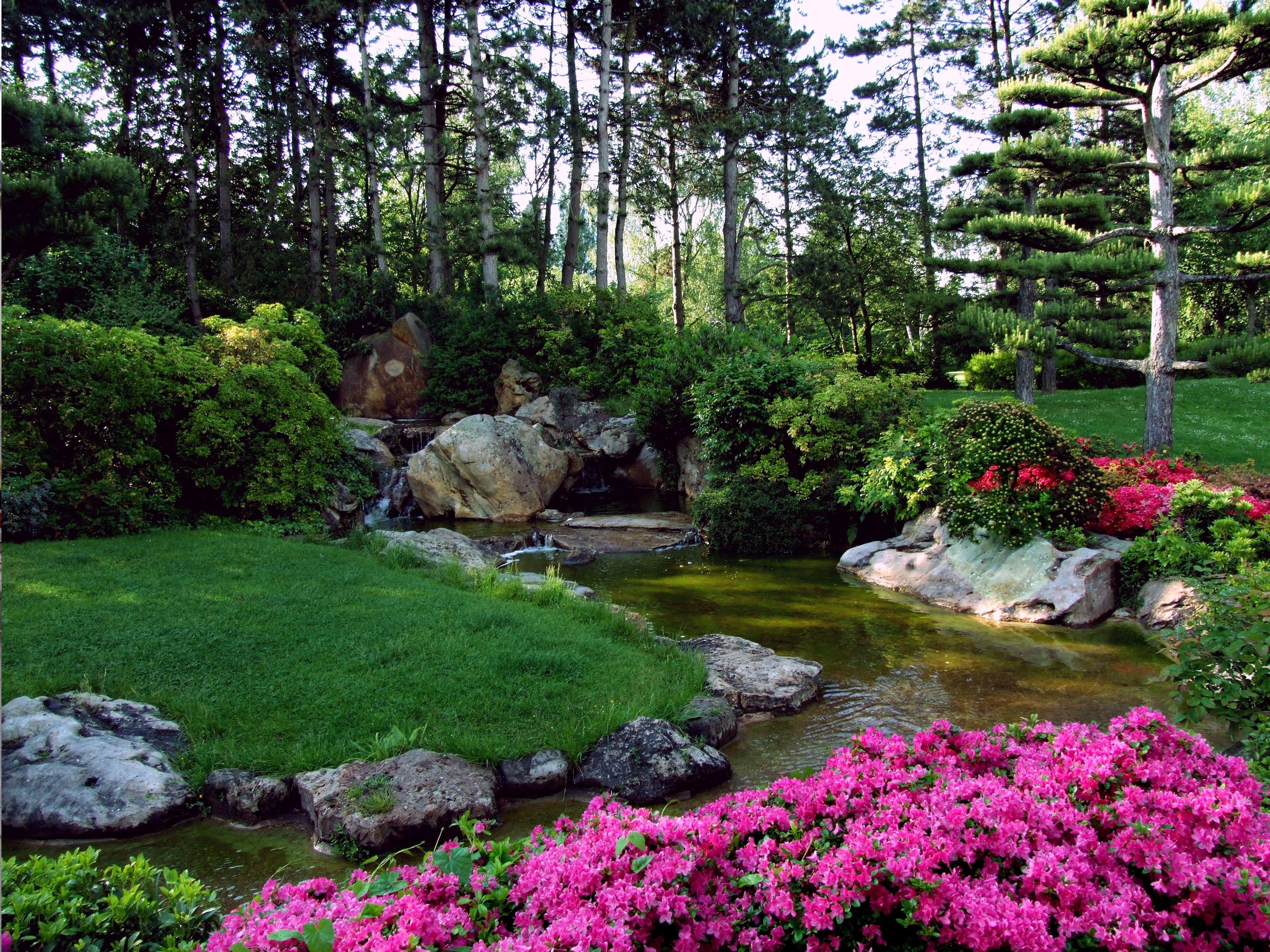 cuidados del jardín en primavera