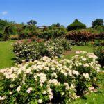 jardines en verano marbella