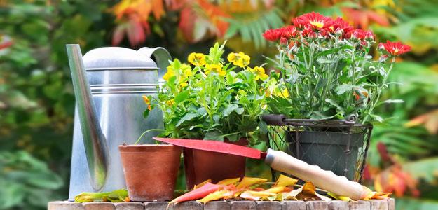 jardinería en Marbella